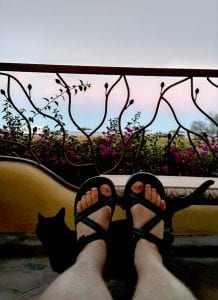 Loreto Lodging feet:Cat