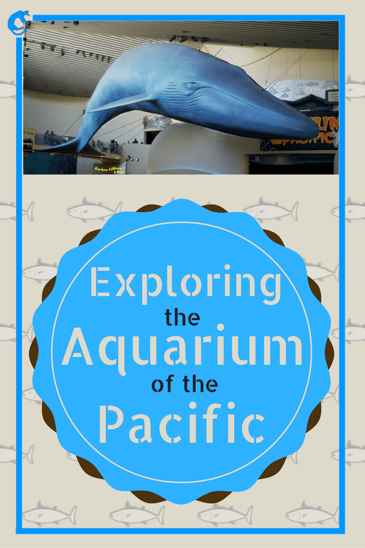 Exploring the Aquarium of the Pacific